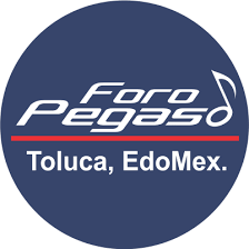 Foro-pegaso-.png